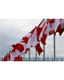 Canadian Avenue Flag