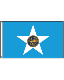 Houston City Flag